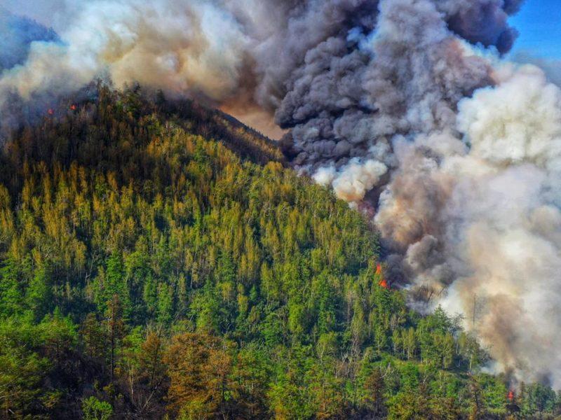 Особый противопожарный режим отменен в Приморье с 16 августа 2021 года
